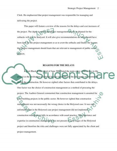 Strategic Project Management essay essay example