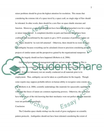 Columbia Space Shuttle essay example