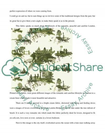Representing Visual Culture essay example