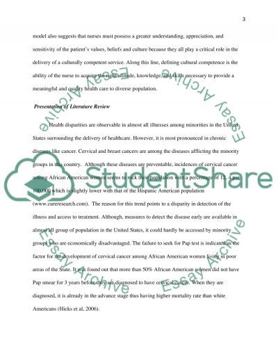 Culturally competent service essay example