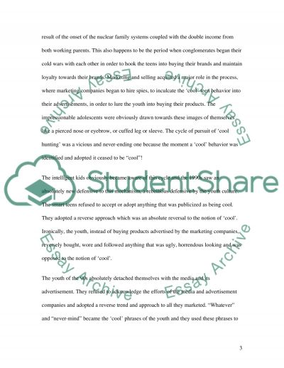 The Hot Pursuit of Cool Teen Behavior essay example