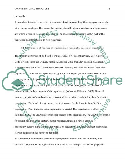 Structure of organization of a clinic essay example