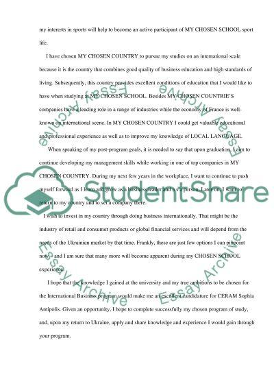 Motivation Essay essay example