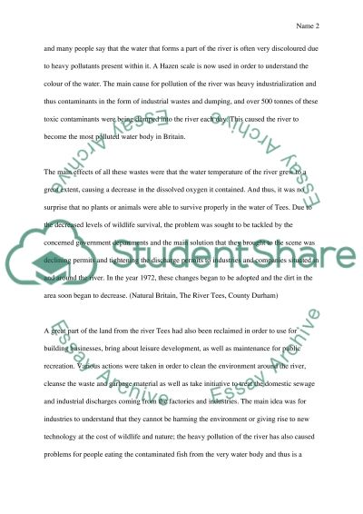 Water Pollution essay example