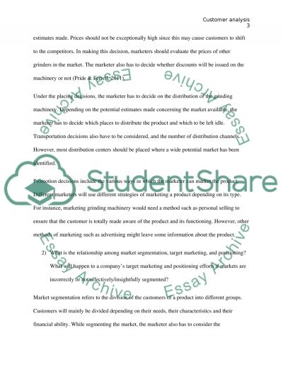 Marketing: Customer Analysis essay example