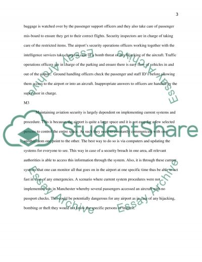 Security in Aviation essay example