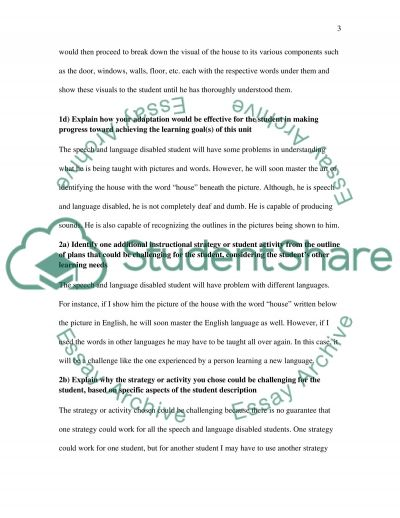 Students with Special Needs essay example