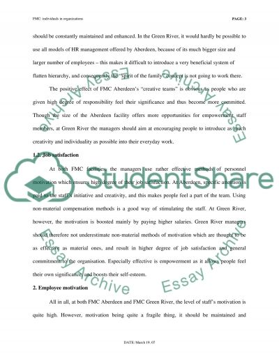 Individuals in Organizations essay example
