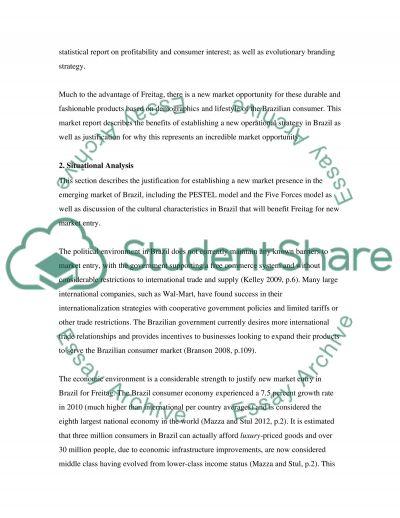 International Marketing Strategy essay example