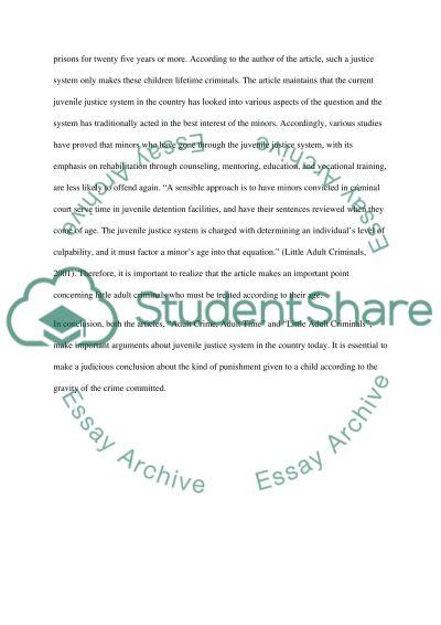 Juvenile Justice Syste, essay example
