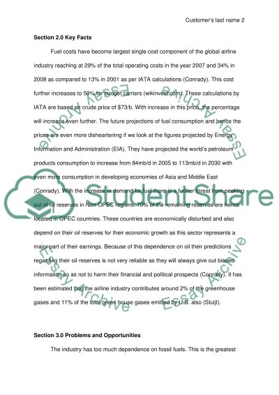 Oil on the Airline Industry essay example