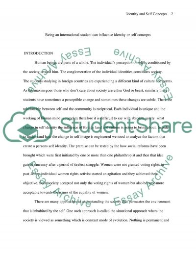 Self Concept in International Students essay example