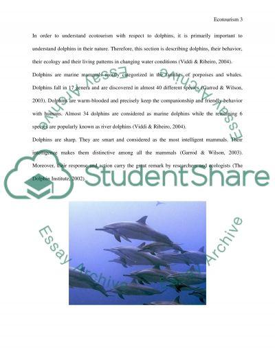 Coursework Ecotourism essay example