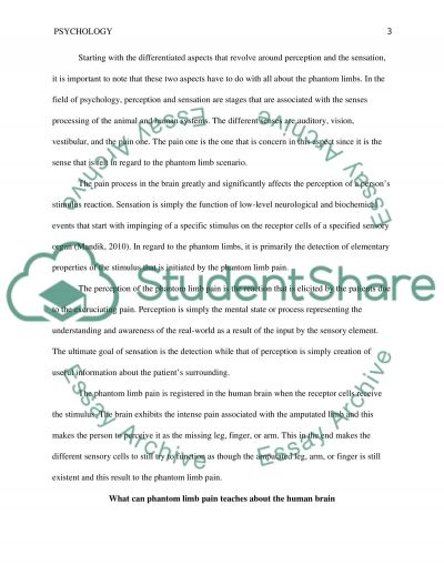 human brain essay critical thinking essay what is a critical thinking essay what is a critical thinking essay nowserving