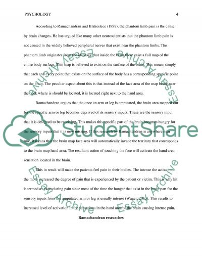 human brain essay the brain essay attitude essay attitude determines altitude essay how the human brain gets its wrinkles