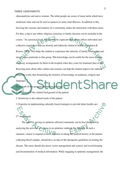 Assignments Essay example