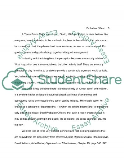 A Probation Officers View of Effectiveness essay example