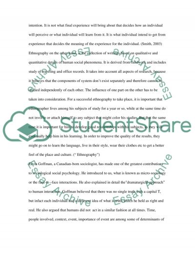Interactionism and Reflexivity essay example