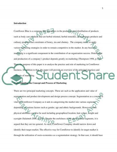 Segmentation, Targeting, Positioning essay example