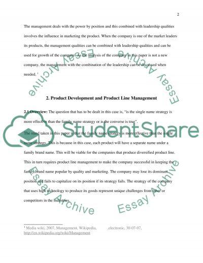 Business Analysis Essay essay example