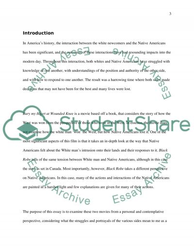 Character Write Up essay example