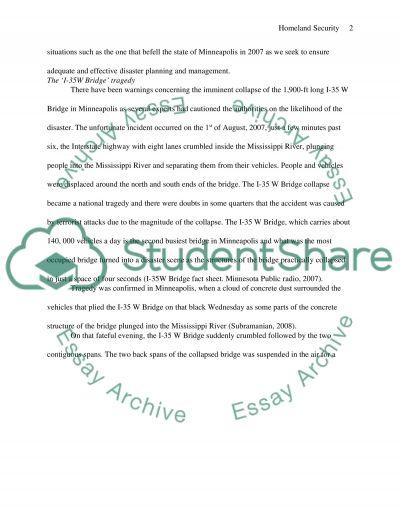 Homeland security essay example