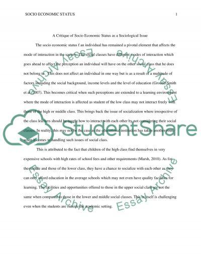 Sociol Economics Status essay example