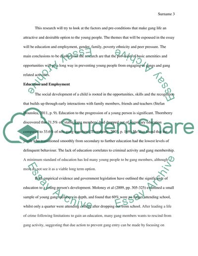 Health Promotion Essay Why Young People Join Gangs Essay On High School Experience also How To Write A Synthesis Essay Why Young People Join Gangs Essay Example  Topics And Well Written  High School Admissions Essay