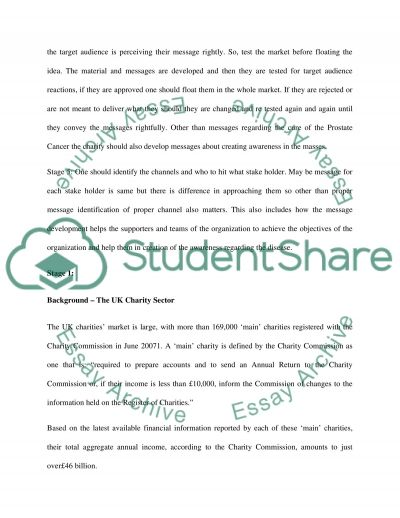 Development of Comprehensive Integrated Marketing Communication Mix essay example