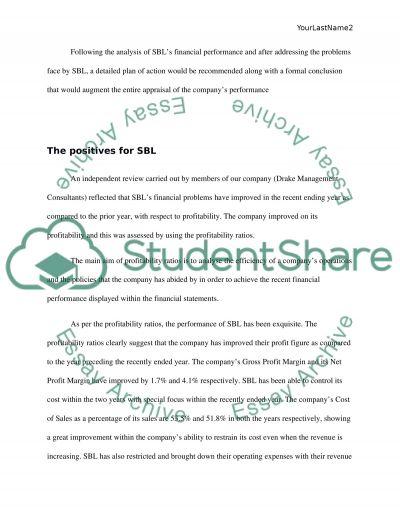 The report on SLA Ltd essay example