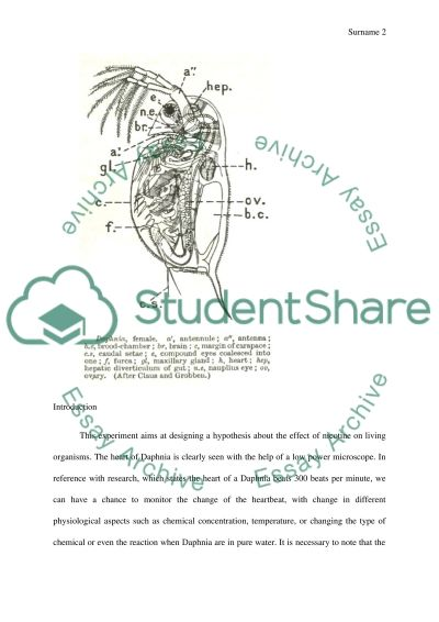 daphnia ecotoxicology lab report essay Daphnia heart rate lab introduction a daphnia is a tiny crustacean related to shrimp that has a clear outside skeleton carapace and jointed legs like.