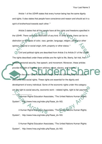 Universal Human Rights essay example
