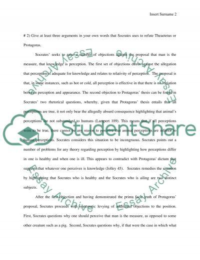 The Theaetetus essay example
