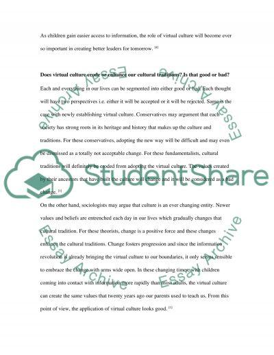 Virtual Culture essay example
