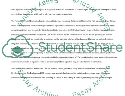 State Responsibility essay example