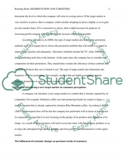 Segmentation and Targeting essay example
