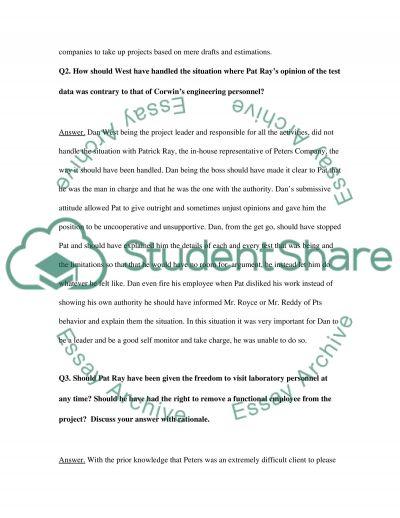 Projct Management essay example