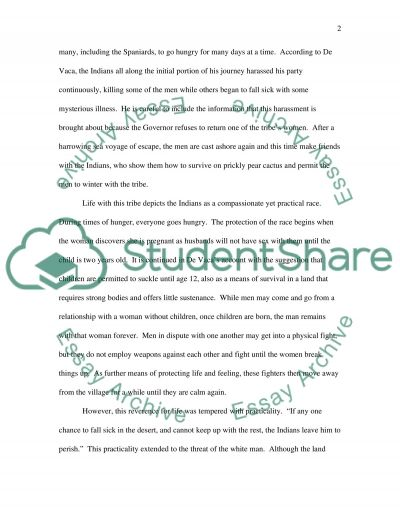 North America essay example