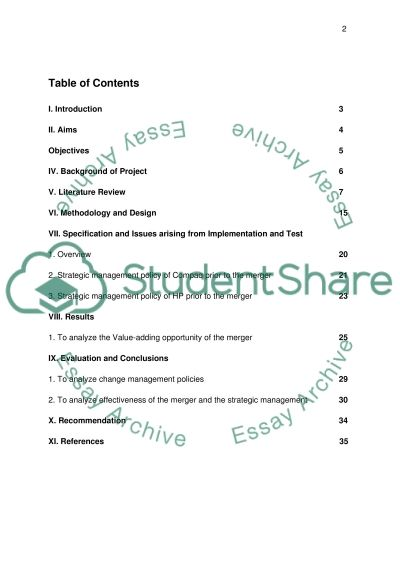 Project Report essay example