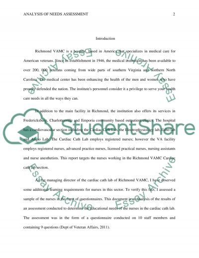 analys of a needs assessment Essay example