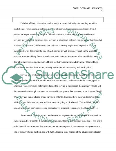 World Travel Services essay example