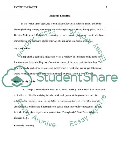 Extended Project essay example