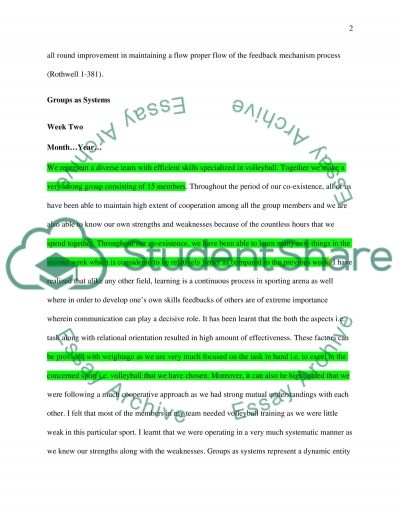 Journal for Small group communication Essay example