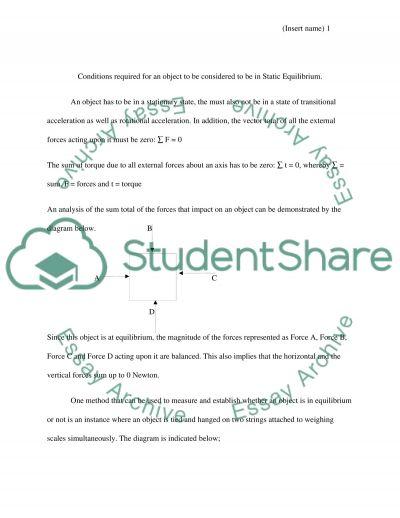 Static Equilibrium essay example