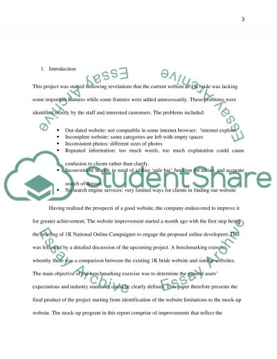 Project documentation, specifications and discussion essay example