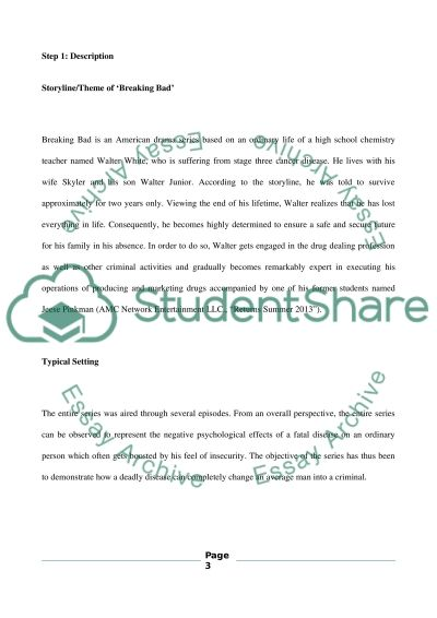 Media Journal Assignment essay example