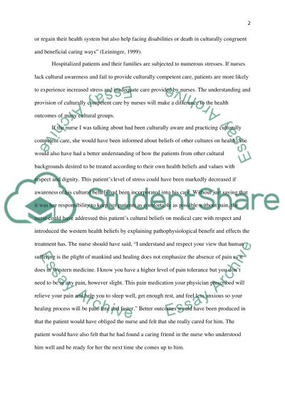 Culturally competent nursing care essay example