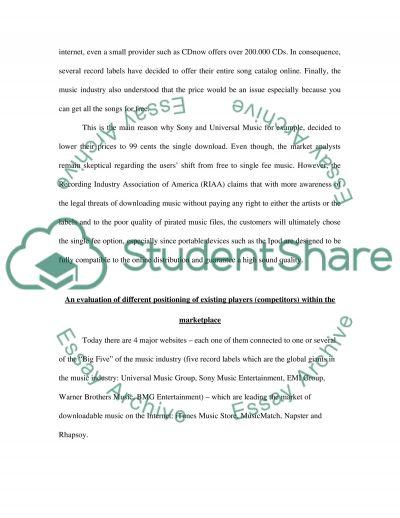 Internet Marketing Report essay example