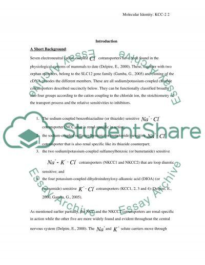 Molecular Identity essay example