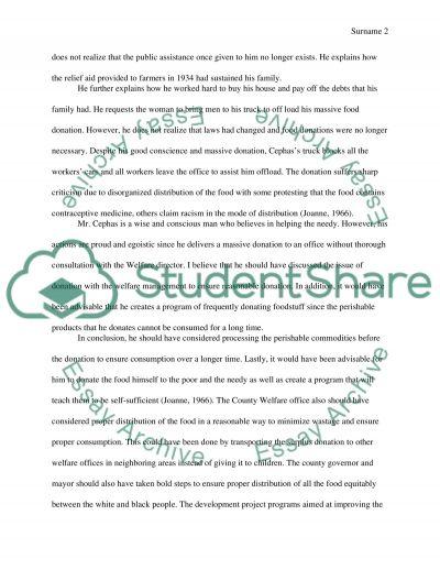 rite aid essay example